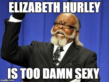 Too Damn High Meme | ELIZABETH HURLEY IS TOO DAMN SEXY | image tagged in memes,too damn high | made w/ Imgflip meme maker