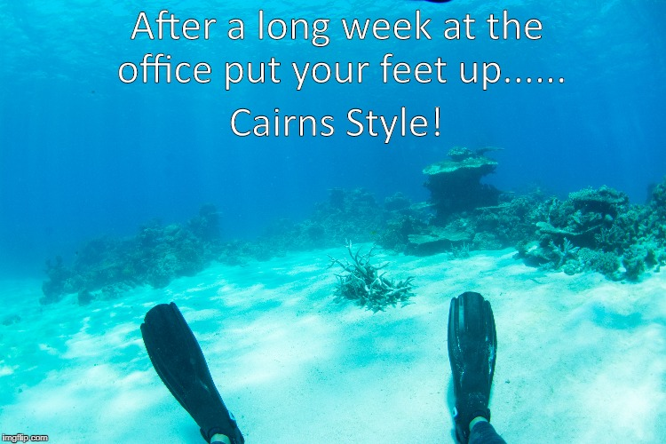 Passions of Paradise | After a long week at the office put your feet up...... Cairns Style! | image tagged in cairns,great barrier reef,passions of paradise,put your feet up,relax | made w/ Imgflip meme maker