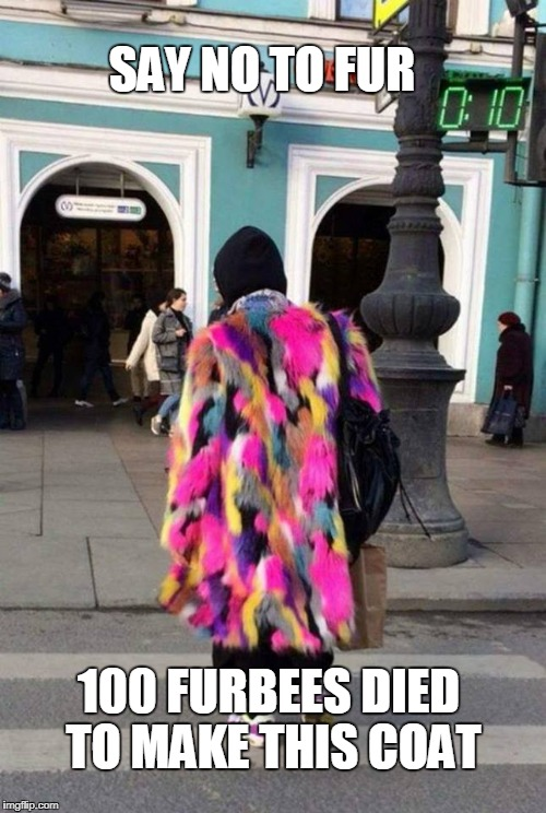 fur | SAY NO TO FUR 100 FURBEES DIED TO MAKE THIS COAT | image tagged in furry | made w/ Imgflip meme maker
