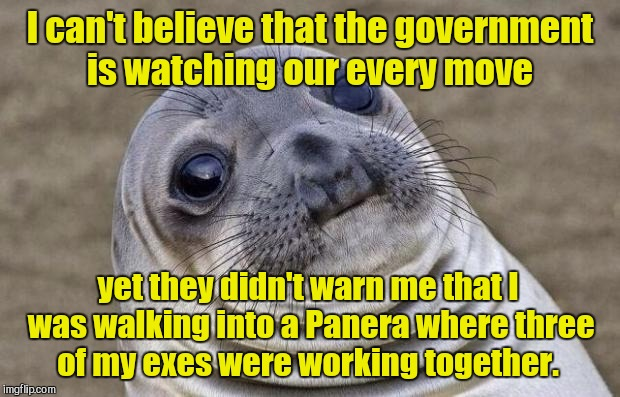 Awkward Moment Sealion | I can't believe that the government is watching our every move yet they didn't warn me that I was walking into a Panera where three of my ex | image tagged in memes,awkward moment sealion | made w/ Imgflip meme maker
