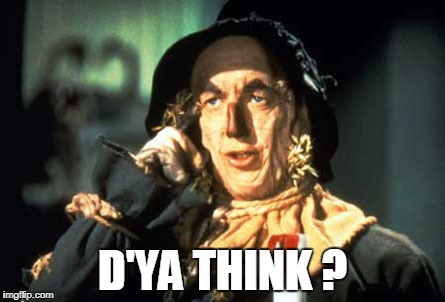 D'ya Think? | D'YA THINK ? | image tagged in wizard of oz scarecrow | made w/ Imgflip meme maker