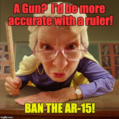 A gun? I'd be more accurate with a ruler! | A Gun?  I'd be more accurate with a ruler! BAN THE AR-15! | image tagged in teacher with ruler,ban ar-15,school shooting,teacher,teacher protector | made w/ Imgflip meme maker