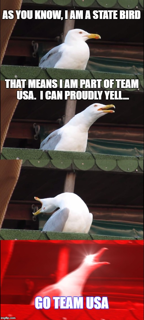 Inhaling Seagull Meme | AS YOU KNOW, I AM A STATE BIRD THAT MEANS I AM PART OF TEAM USA.  I CAN PROUDLY YELL... GO TEAM USA | image tagged in memes,inhaling seagull | made w/ Imgflip meme maker