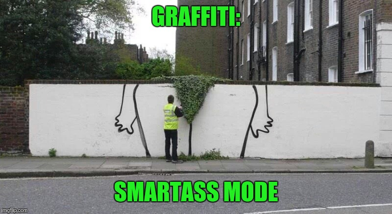 Keep that bush trimmed |  GRAFFITI:; SMARTASS MODE | image tagged in graffiti,graffiti mode,pipe_picasso,bush | made w/ Imgflip meme maker