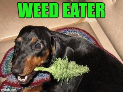 WEED EATER | made w/ Imgflip meme maker