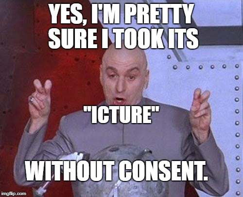 "Dr Evil Laser Meme | YES, I'M PRETTY SURE I TOOK ITS ""ICTURE"" WITHOUT CONSENT. 