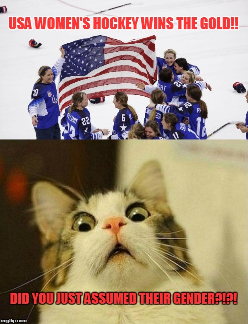 Triggered Cat! | USA WOMEN'S HOCKEY WINS THE GOLD!! DID YOU JUST ASSUMED THEIR GENDER?!?! | image tagged in meme,funny,triggered,sjw,cat,usa women's hockey | made w/ Imgflip meme maker