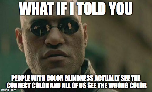 Matrix Morpheus Meme | WHAT IF I TOLD YOU PEOPLE WITH COLOR BLINDNESS ACTUALLY SEE THE CORRECT COLOR AND ALL OF US SEE THE WRONG COLOR | image tagged in memes,matrix morpheus | made w/ Imgflip meme maker