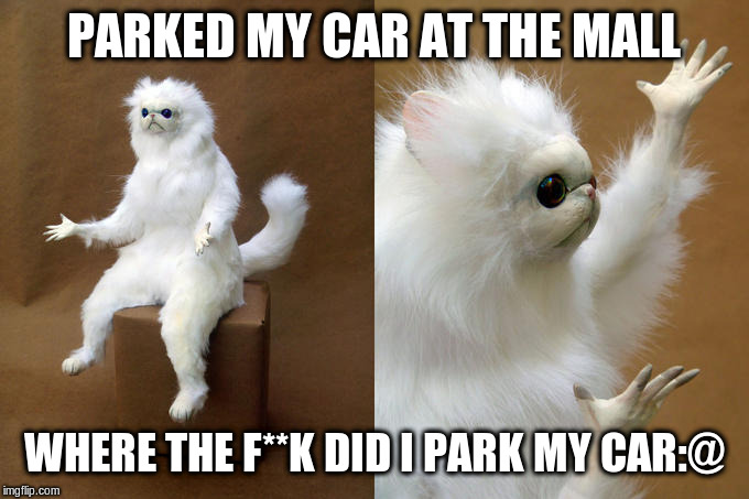 Getting old | PARKED MY CAR AT THE MALL WHERE THE F**K DID I PARK MY CAR:@ | image tagged in memes,persian cat room guardian,gettingold,dude wheres my car | made w/ Imgflip meme maker