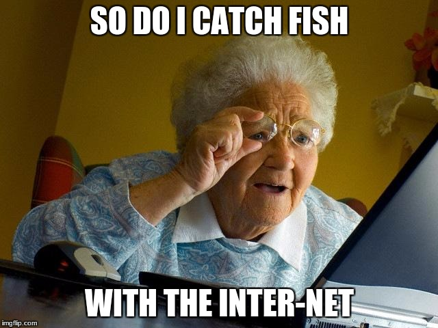 Grandma Finds The Internet Meme | SO DO I CATCH FISH WITH THE INTER-NET | image tagged in memes,grandma finds the internet | made w/ Imgflip meme maker