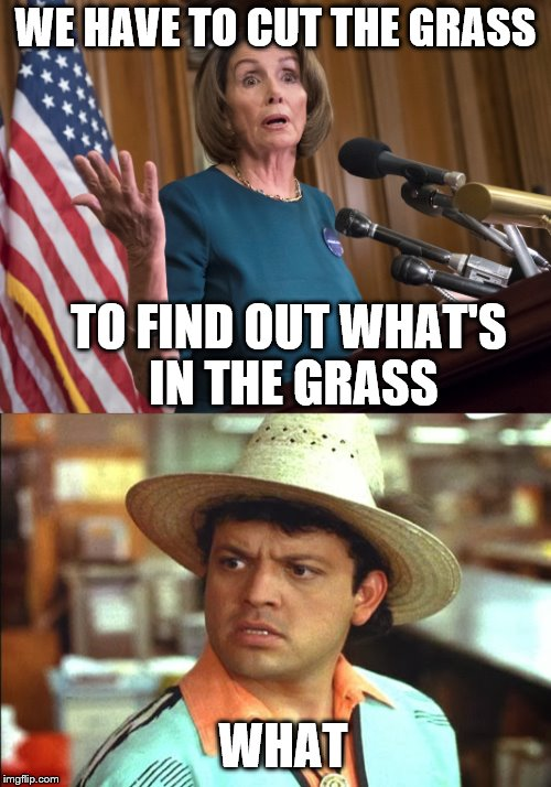"Nancy with a genius solution to illegal immigration, ""cut the grass along the AZ border"". 