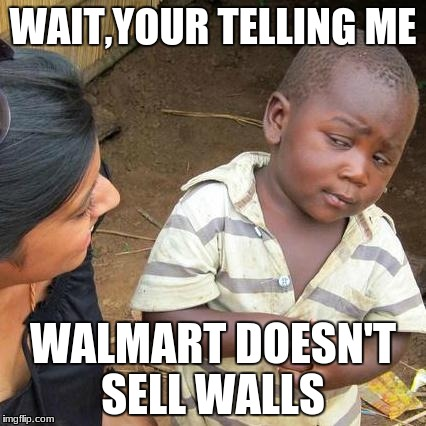 Third World Skeptical Kid Meme | WAIT,YOUR TELLING ME WALMART DOESN'T SELL WALLS | image tagged in memes,third world skeptical kid | made w/ Imgflip meme maker