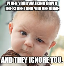 Skeptical Baby Meme | WHEN YOUR WALKING DOWN THE STREET AND YOU SEE SOME AND THEY IGNORE YOU. | image tagged in memes,skeptical baby | made w/ Imgflip meme maker