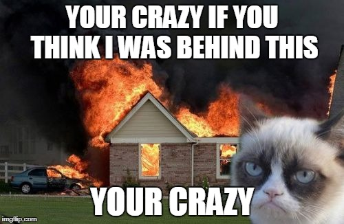 Burn Kitty Meme | YOUR CRAZY IF YOU THINK I WAS BEHIND THIS YOUR CRAZY | image tagged in memes,burn kitty,grumpy cat | made w/ Imgflip meme maker