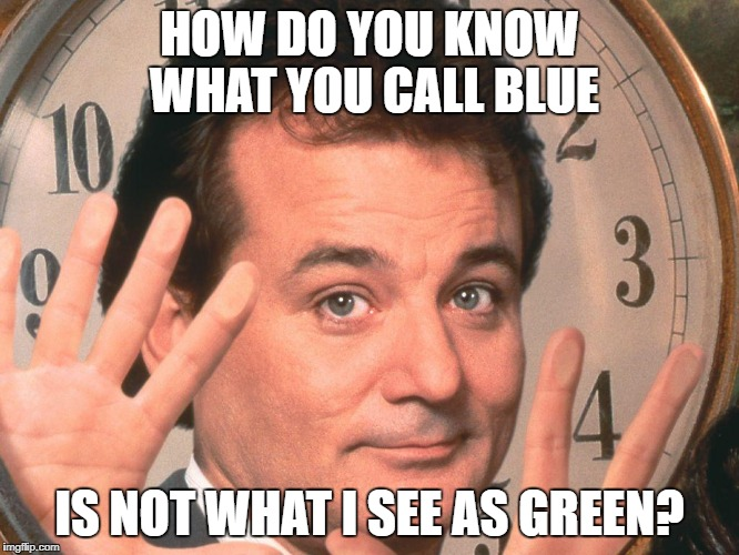 Bill time | HOW DO YOU KNOW WHAT YOU CALL BLUE IS NOT WHAT I SEE AS GREEN? | image tagged in bill time | made w/ Imgflip meme maker