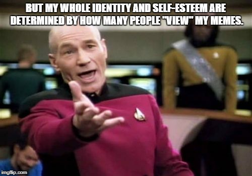 "Picard Wtf Meme | BUT MY WHOLE IDENTITY AND SELF-ESTEEM ARE DETERMINED BY HOW MANY PEOPLE ""VIEW"" MY MEMES. 