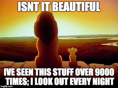 Lion King | ISNT IT BEAUTIFUL IVE SEEN THIS STUFF OVER 9000 TIMES; I LOOK OUT EVERY NIGHT | image tagged in memes,lion king | made w/ Imgflip meme maker