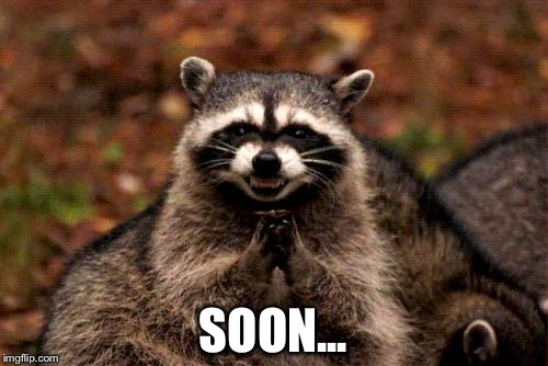 Evil Plotting Raccoon Meme | SOON... | image tagged in memes,evil plotting raccoon | made w/ Imgflip meme maker
