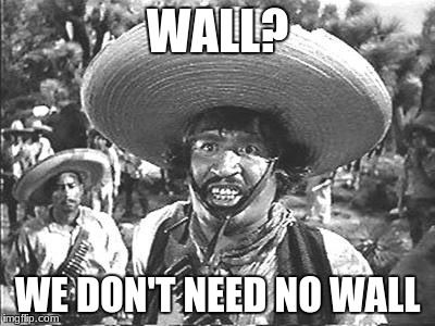 we dont need no stinking wall | WALL? WE DON'T NEED NO WALL | image tagged in we don't need no stinking | made w/ Imgflip meme maker