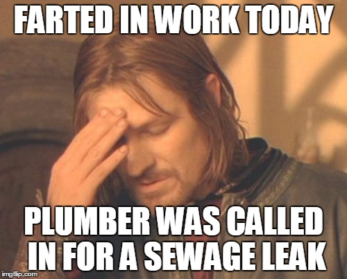 Frustrated Boromir Meme | FARTED IN WORK TODAY PLUMBER WAS CALLED IN FOR A SEWAGE LEAK | image tagged in memes,frustrated boromir | made w/ Imgflip meme maker