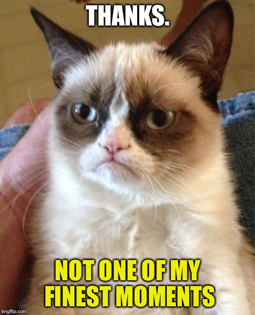 Grumpy Cat Meme | THANKS. NOT ONE OF MY FINEST MOMENTS | image tagged in memes,grumpy cat | made w/ Imgflip meme maker