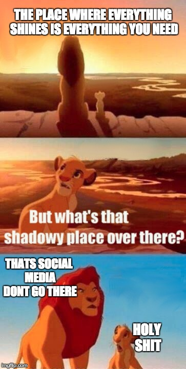 every introvert father | THE PLACE WHERE EVERYTHING SHINES IS EVERYTHING YOU NEED THATS SOCIAL MEDIA DONT GO THERE HOLY SHIT | image tagged in memes,simba shadowy place | made w/ Imgflip meme maker