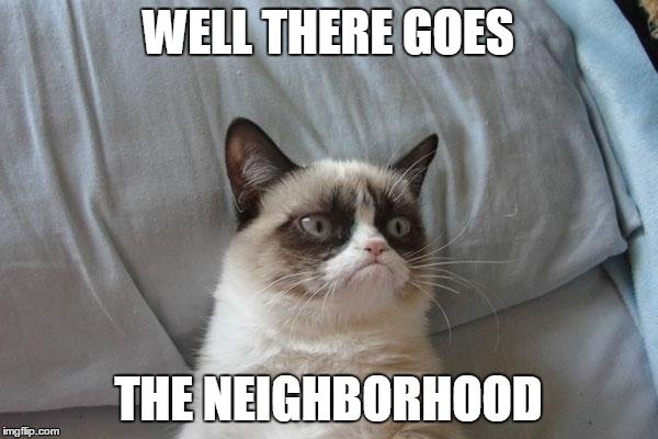 WELL THERE GOES THE NEIGHBORHOOD | made w/ Imgflip meme maker