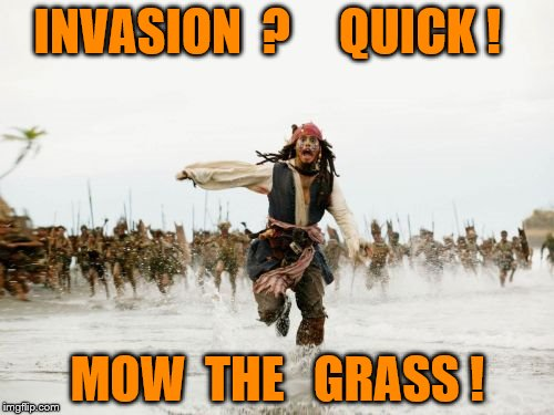 Jack Sparrow Being Chased Meme | INVASION  ?     QUICK ! MOW  THE   GRASS ! | image tagged in memes,jack sparrow being chased | made w/ Imgflip meme maker