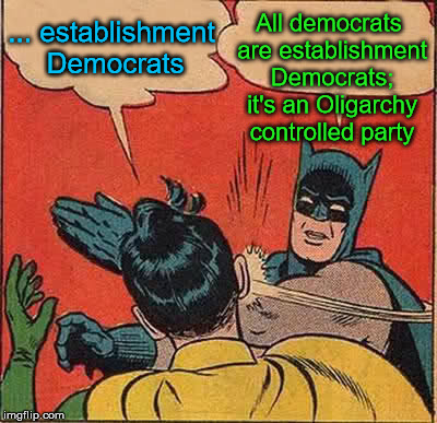 An oligarchy party can't change democratically from within because it's not democratic, despite the misnomer | ... establishment Democrats All democrats are establishment Democrats; it's an Oligarchy controlled party | image tagged in memes,batman slapping robin,oligarchy,democrats | made w/ Imgflip meme maker