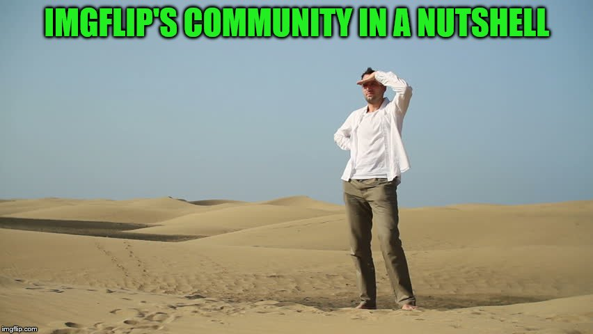 The lack of imgflip users active? ALIENS! | IMGFLIP'S COMMUNITY IN A NUTSHELL | image tagged in memes,imgflip,in a nutshell | made w/ Imgflip meme maker