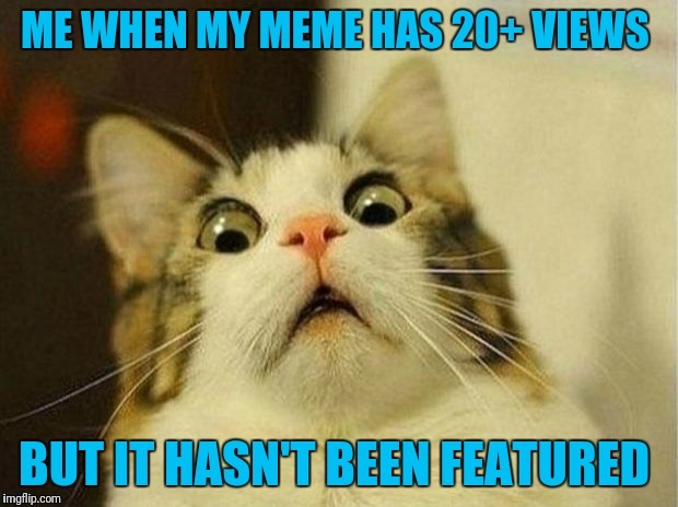 What The Actual Feline | ME WHEN MY MEME HAS 20+ VIEWS BUT IT HASN'T BEEN FEATURED | image tagged in memes,scared cat | made w/ Imgflip meme maker