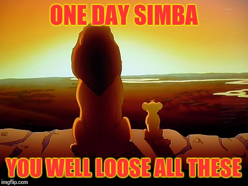 Lion King Meme | ONE DAY SIMBA YOU WELL LOOSE ALL THESE | image tagged in memes,lion king | made w/ Imgflip meme maker