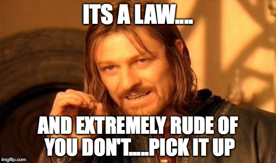 One Does Not Simply Meme | ITS A LAW.... AND EXTREMELY RUDE OF YOU DON'T.....PICK IT UP | image tagged in memes,one does not simply | made w/ Imgflip meme maker