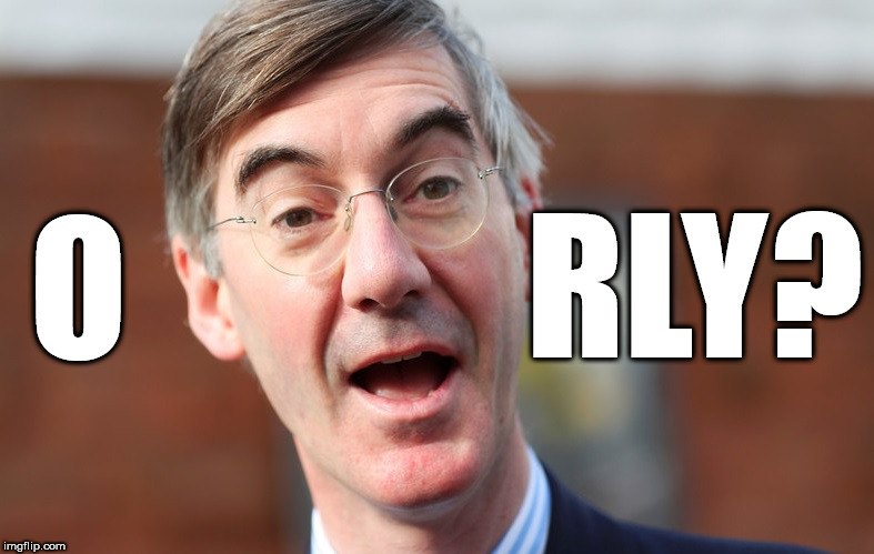 O RLY? | image tagged in rees mogg | made w/ Imgflip meme maker
