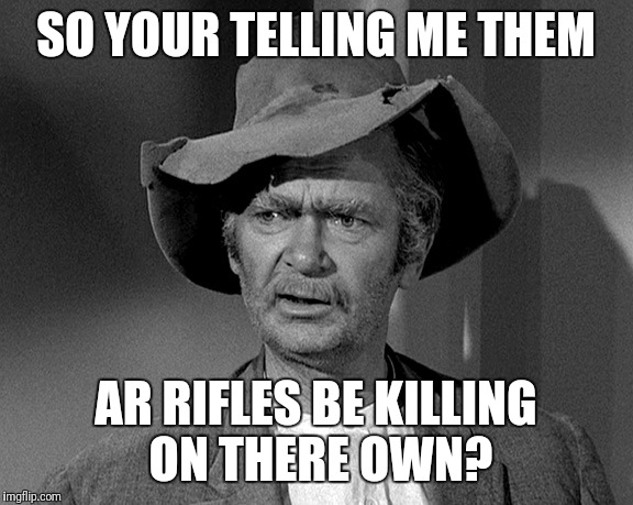 Jed Clampett | SO YOUR TELLING ME THEM AR RIFLES BE KILLING ON THERE OWN? | image tagged in jed clampett | made w/ Imgflip meme maker