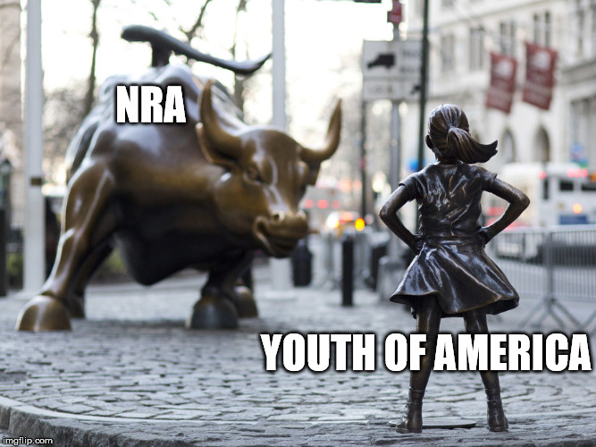 NRA vs Kids | NRA YOUTH OF AMERICA | image tagged in nra | made w/ Imgflip meme maker