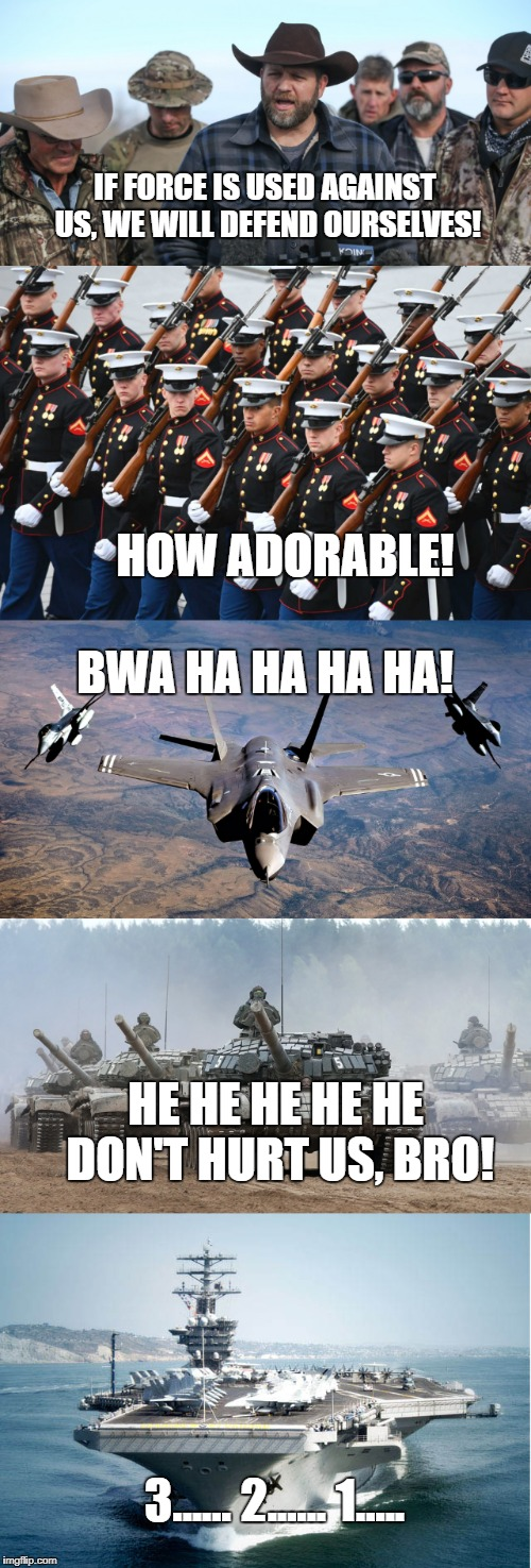 Good luck! | IF FORCE IS USED AGAINST US, WE WILL DEFEND OURSELVES! HOW ADORABLE! BWA HA HA HA HA! HE HE HE HE HE DON'T HURT US, BRO! 3...... 2...... 1.. | image tagged in militia,military | made w/ Imgflip meme maker
