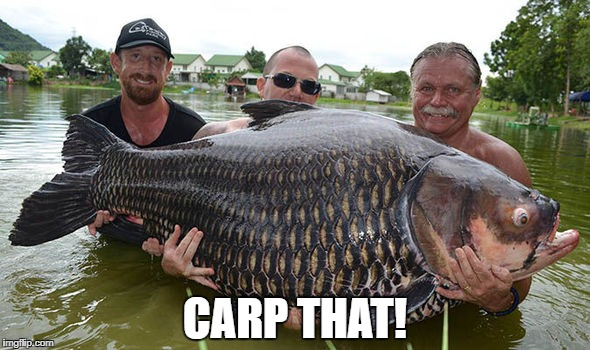 CARP THAT! | made w/ Imgflip meme maker