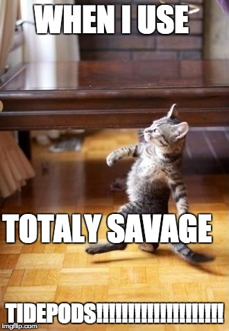 Cool Cat Stroll Meme | WHEN I USE TIDEPODS!!!!!!!!!!!!!!!!!!!! TOTALY SAVAGE | image tagged in memes,cool cat stroll | made w/ Imgflip meme maker