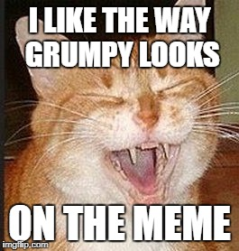 I LIKE THE WAY GRUMPY LOOKS ON THE MEME | made w/ Imgflip meme maker