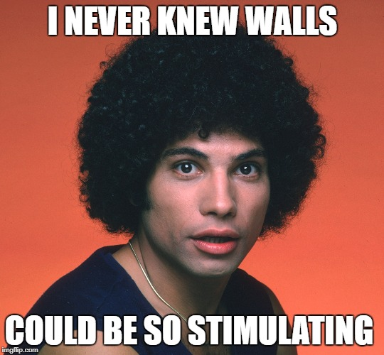 I NEVER KNEW WALLS COULD BE SO STIMULATING | made w/ Imgflip meme maker