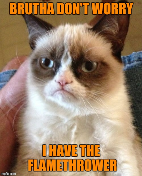 Grumpy Cat Meme | BRUTHA DON'T WORRY I HAVE THE FLAMETHROWER | image tagged in memes,grumpy cat | made w/ Imgflip meme maker