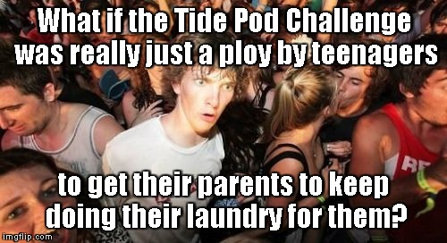 Sudden Clarity Clarence Meme | What if the Tide Pod Challenge was really just a ploy by teenagers to get their parents to keep doing their laundry for them? | image tagged in memes,sudden clarity clarence | made w/ Imgflip meme maker