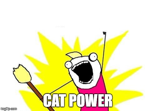 X All The Y Meme | CAT POWER | image tagged in memes,x all the y | made w/ Imgflip meme maker