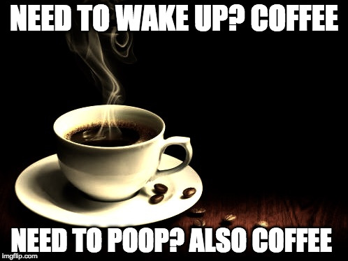 You awake? | NEED TO WAKE UP? COFFEE NEED TO POOP? ALSO COFFEE | image tagged in coffee lust,wake up,coffee | made w/ Imgflip meme maker