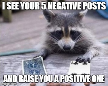 Positive Post Raccoon | I SEE YOUR 5 NEGATIVE POSTS AND RAISE YOU A POSITIVE ONE | image tagged in positive,post,raccoon | made w/ Imgflip meme maker