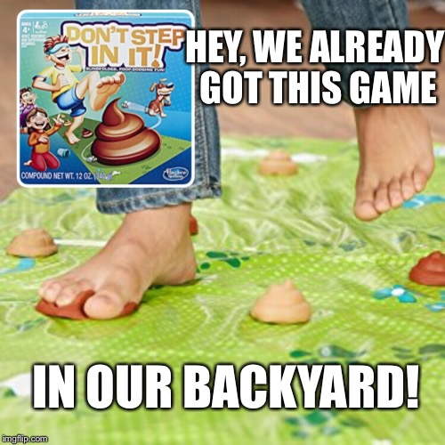 Dog sold separately | HEY, WE ALREADY GOT THIS GAME IN OUR BACKYARD! | image tagged in memes,potty humor,dog poop,games,funny memes | made w/ Imgflip meme maker