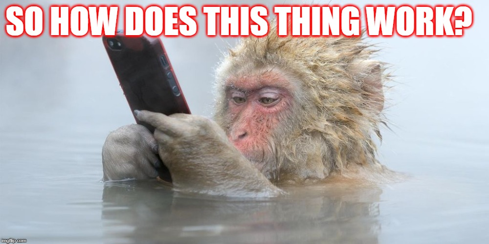 Ipod Snowmonkey | SO HOW DOES THIS THING WORK? | image tagged in ipod snowmonkey | made w/ Imgflip meme maker