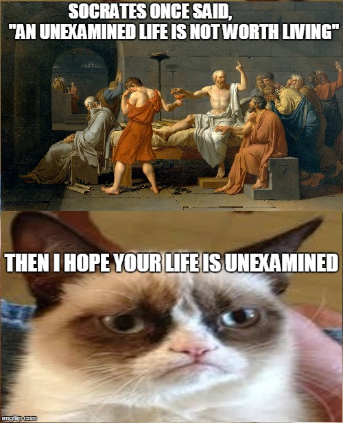 "Grumpy Cat Meme | SOCRATES ONCE SAID,              ""AN UNEXAMINED LIFE IS NOT WORTH LIVING"" THEN I HOPE YOUR LIFE IS UNEXAMINED 