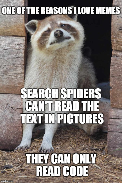 Big brother's watchin' ya know... | ONE OF THE REASONS I LOVE MEMES THEY CAN ONLY READ CODE SEARCH SPIDERS CAN'T READ THE TEXT IN PICTURES | image tagged in search,code,meme lover | made w/ Imgflip meme maker